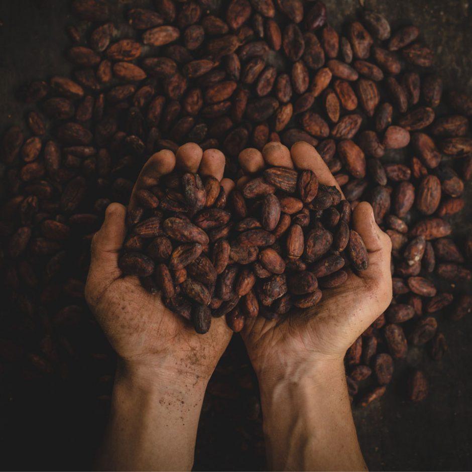 POD, l'artisanat du chocolat à Bali