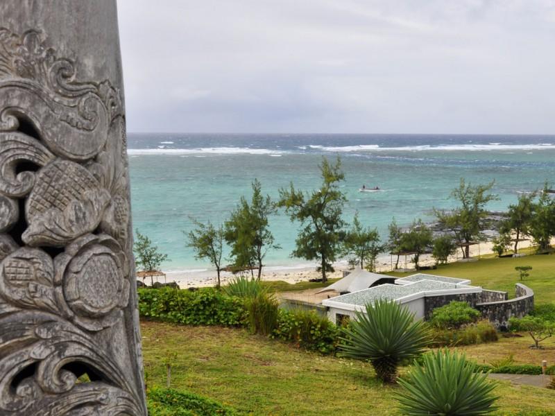 le Tekoma à Rodrigues