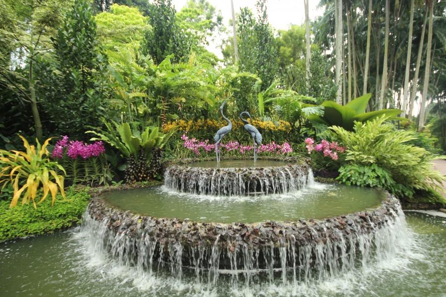 Singapour un premier voyage dans la ville jardin le for Jardin botanique singapour
