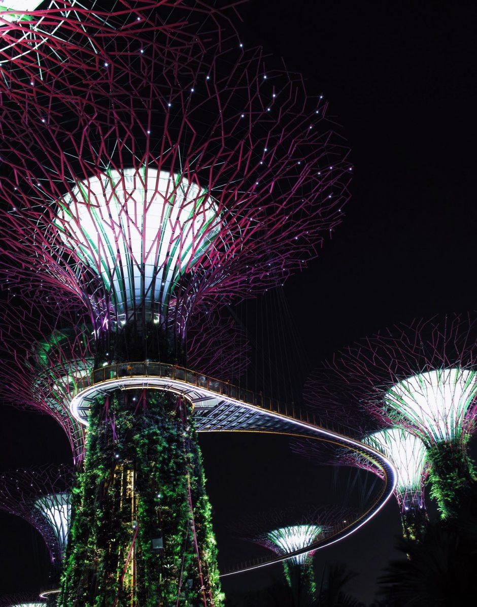 Un premier voyage à Singapour