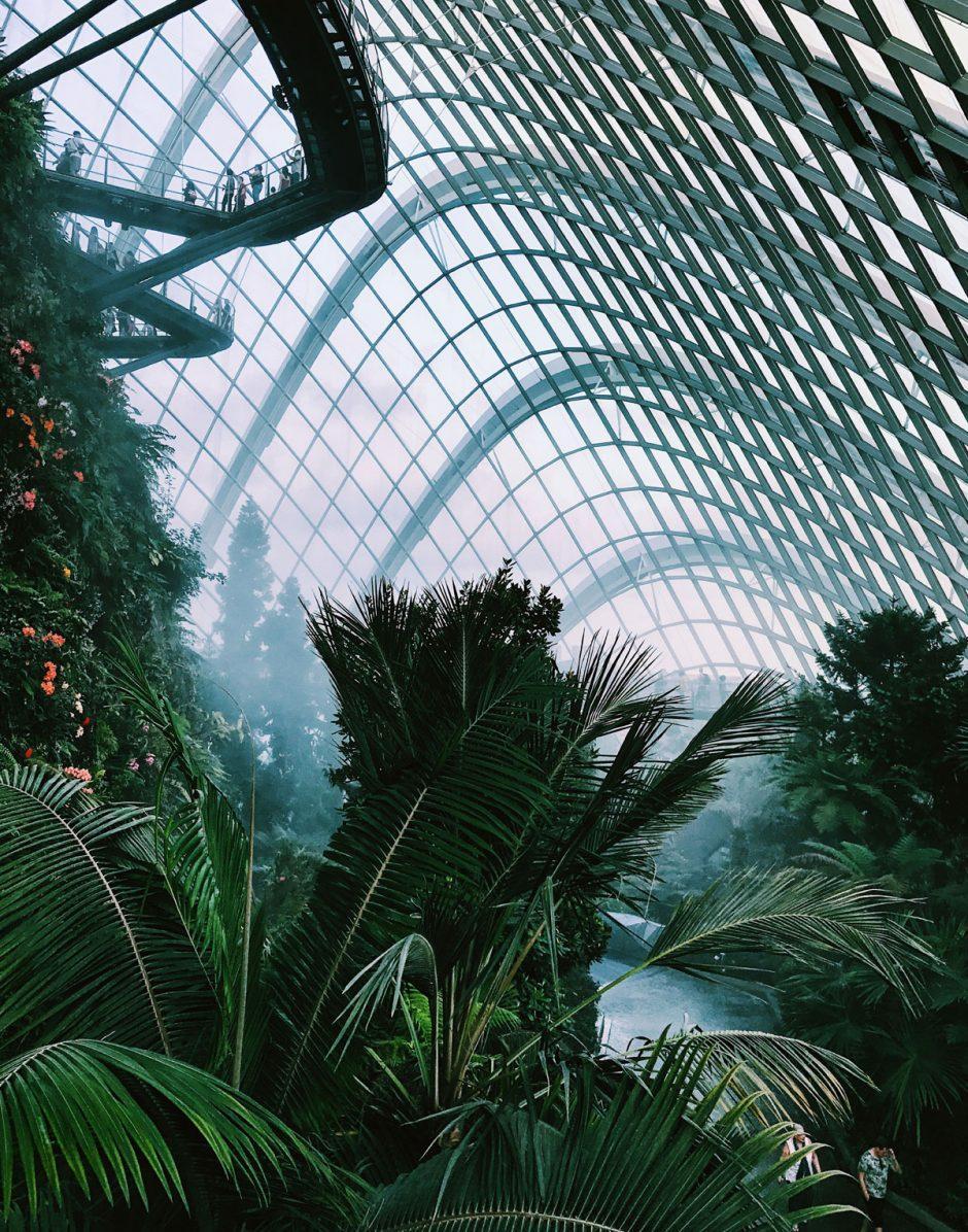 Singapour, havre de nature urbaine