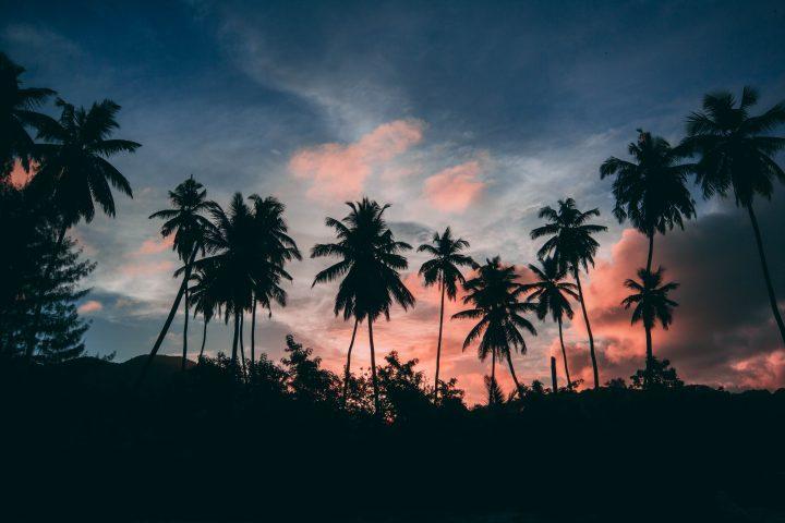 Seychelles, le guide des plus belles plages