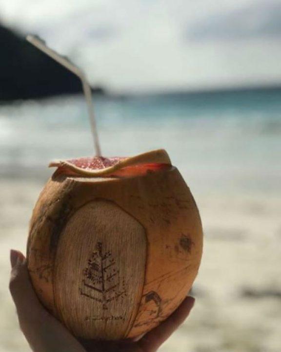 Eau de coco en bord de mer aux Seychelles